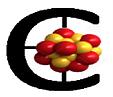 Logo: Capture